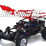 Losi Mini Desert  Buggy