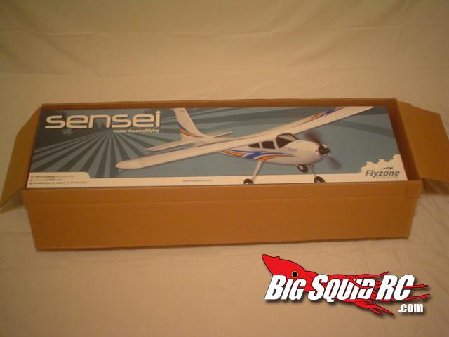 Flyzone Sensei