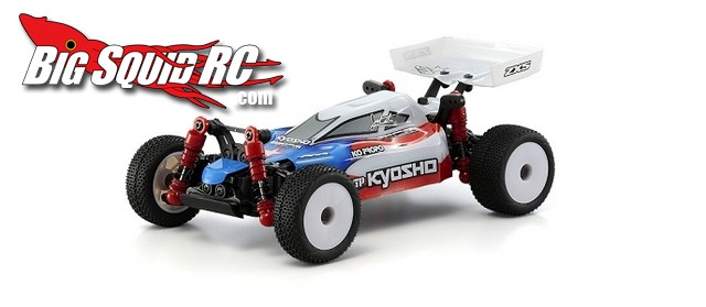 Jared Tebo Edition Kyosho Mini-Z Buggy