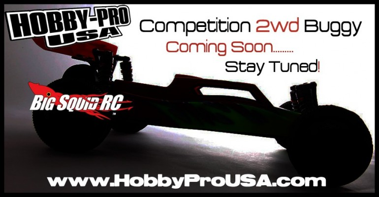 Hobby Pro USA 10th scale buggy