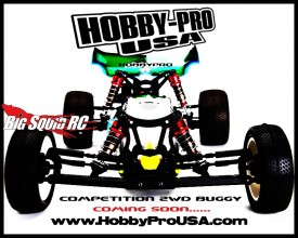 Hobby Pro USA 2wd 10th scale buggy
