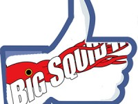 squid_fb