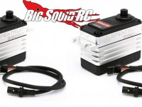 Spektrum 5th Scale Servos
