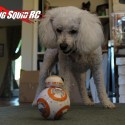 bb_8_review_02