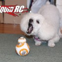 bb_8_review_03