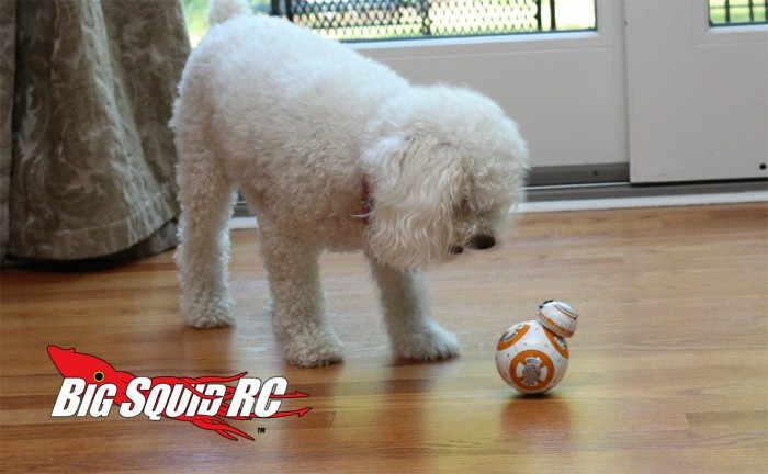 bb_8_review_05