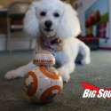 bb_8_review_08