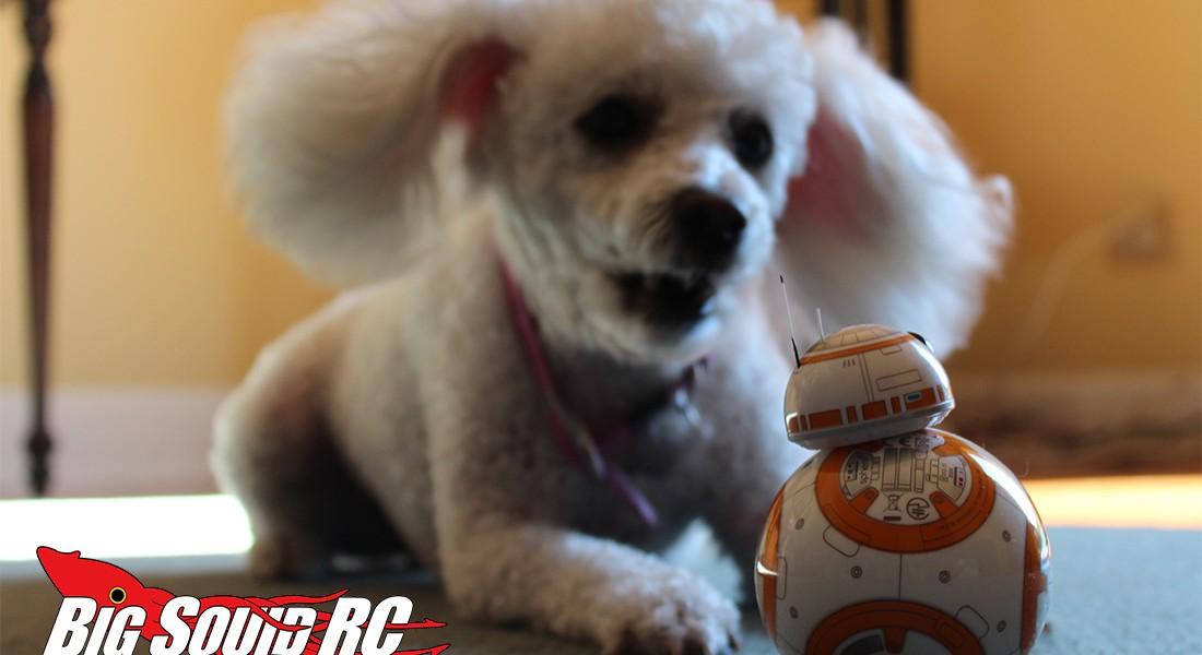 bb_8_review_12