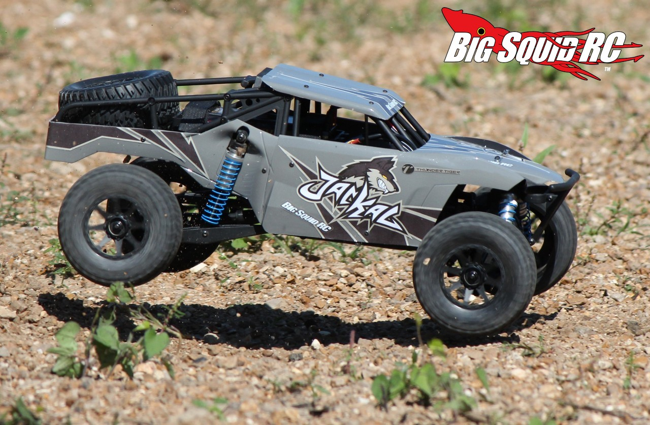 rtr rc buggy with Thunder Tiger Jackal Desert Buggy Review on P Rm7764eu besides Thunder Tiger Jackal Desert Buggy Review together with Roost 118 4wd Desert Buggy From Ecx further Unboxing Thunder Tiger Bushmaster 18th Buggy also Hpi Savage Option Part Modifications.