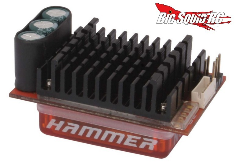 Novak Hammer