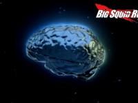 rc brain hobbico