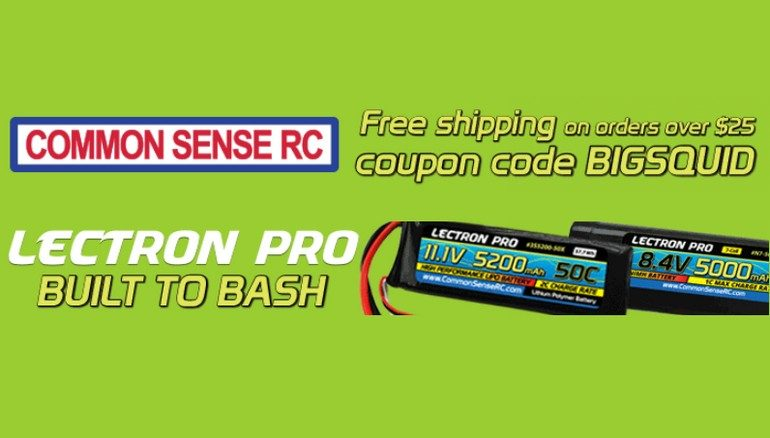 Free Shipping Common Sense RC