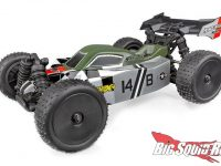 Team Associated Reflex 1/14 14B Buggy 14T Truggy