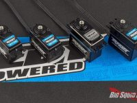 Reedy Brushless Servos
