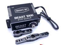 REEF's RC Beast 1000 5th Scale Steering Servo