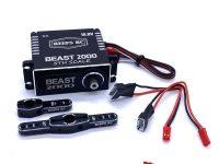 REEF's RC Beast 2000 5th Scale Steering Servo